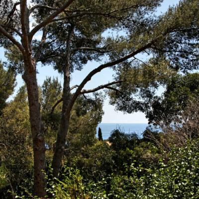 https://www.bonporteau.fr/base/uploads/2021/03/bonporteau-emplacement-camping-vue-mer-2.jpg